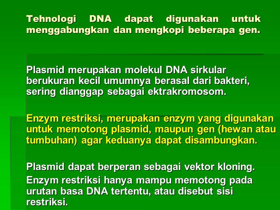Vektor Potongan DNA yang digunakan menyisipkan potongan DNA asing (DNA donor) ke dalam sel atau DNA resipien.