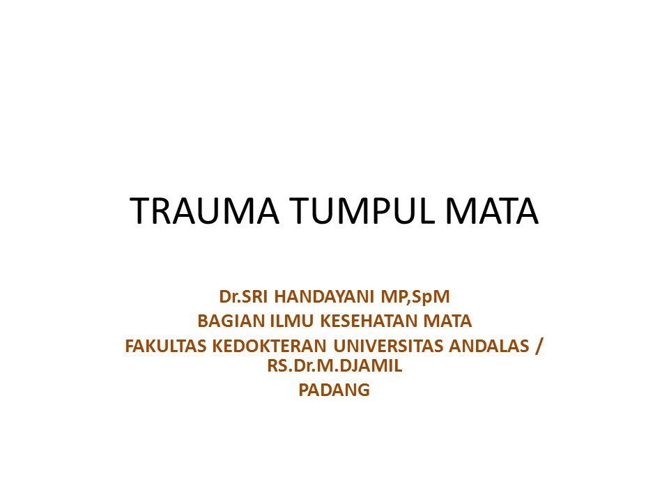 TRAUMA TUMPUL MATA Dr.SRI HANDAYANI MP,SpM BAGIAN ILMU KESEHATAN MATA FAKULTAS KEDOKTERAN UNIVERSITAS ANDALAS / RS.Dr.M.DJAMIL PADANG