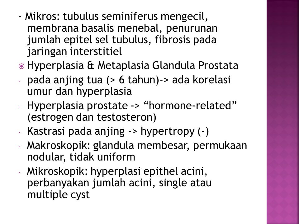 - Mikros: tubulus seminiferus mengecil, membrana basalis menebal, penurunan jumlah epitel sel tubulus, fibrosis pada jaringan interstitiel  Hyperplas