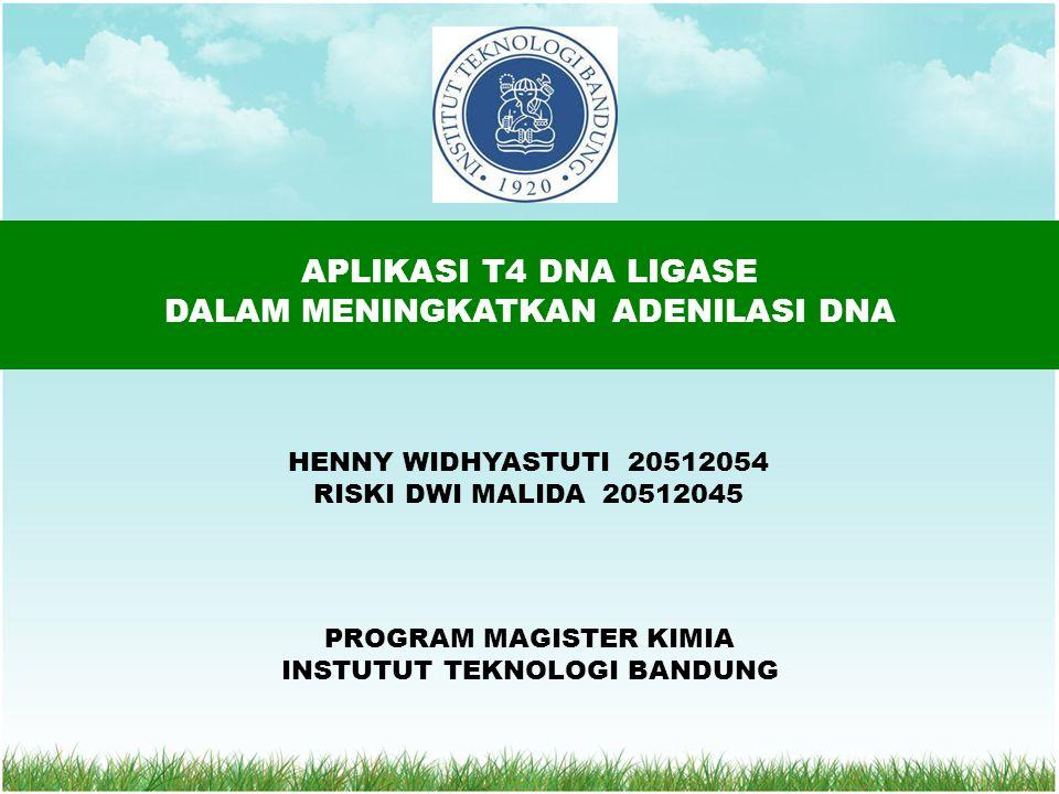 APLIKASI T4 DNA LIGASE DALAM MENINGKATKAN ADENILASI DNA HENNY WIDHYASTUTI 20512054 RISKI DWI MALIDA 20512045 PROGRAM MAGISTER KIMIA INSTUTUT TEKNOLOGI BANDUNG