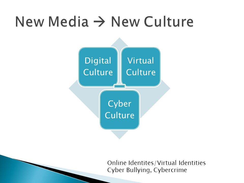 Digital Culture Virtual Culture Cyber Culture Online Identites/Virtual Identities Cyber Bullying, Cybercrime