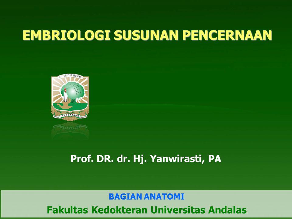2/9 EMBRIOLOGI SUSUNAN PENCERNAAN BERASAL DARI Pharyngeal Gut Usus sederhana depan Usus sederhana tengah Usus sederhana belakang