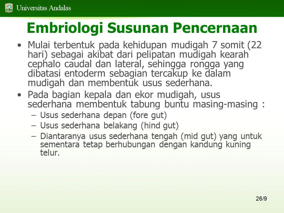 26/9 Embriologi Susunan Pencernaan Mulai terbentuk pada kehidupan mudigah 7 somit (22 hari) sebagai akibat dari pelipatan mudigah kearah cephalo cauda