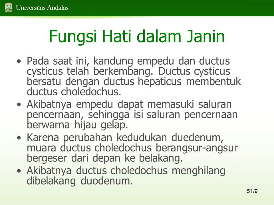 51/9 Fungsi Hati dalam Janin Pada saat ini, kandung empedu dan ductus cysticus telah berkembang. Ductus cysticus bersatu dengan ductus hepaticus membe