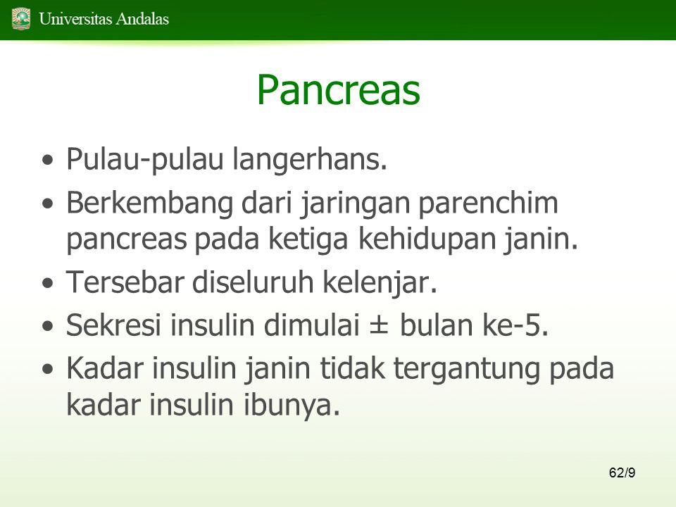 62/9 Pancreas Pulau-pulau langerhans. Berkembang dari jaringan parenchim pancreas pada ketiga kehidupan janin. Tersebar diseluruh kelenjar. Sekresi in
