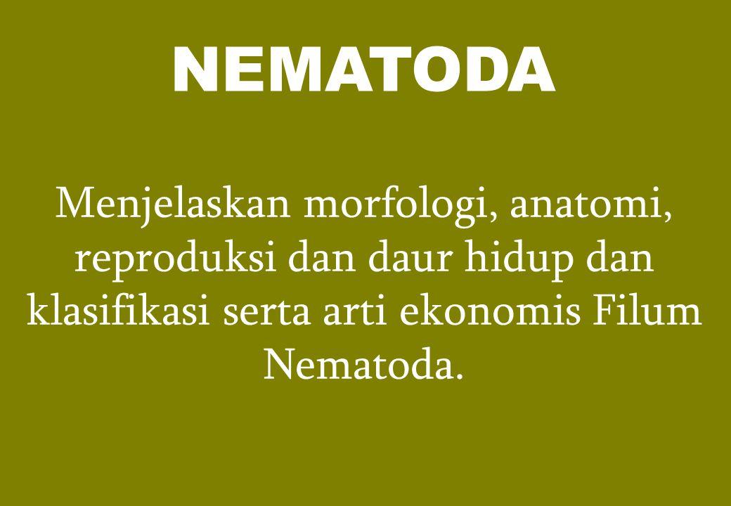 Menjelaskan morfologi, anatomi, reproduksi dan daur hidup dan klasifikasi serta arti ekonomis Filum Nematoda. NEMATODA