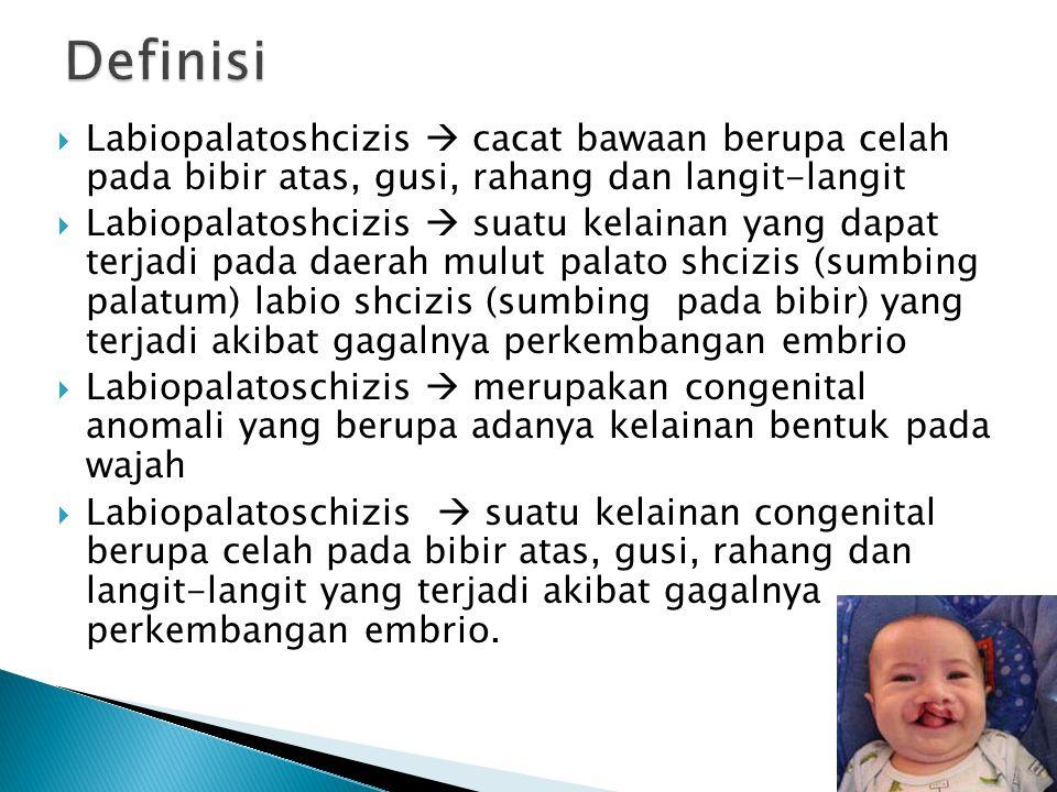  Labiopalatoshcizis  cacat bawaan berupa celah pada bibir atas, gusi, rahang dan langit-langit  Labiopalatoshcizis  suatu kelainan yang dapat terj
