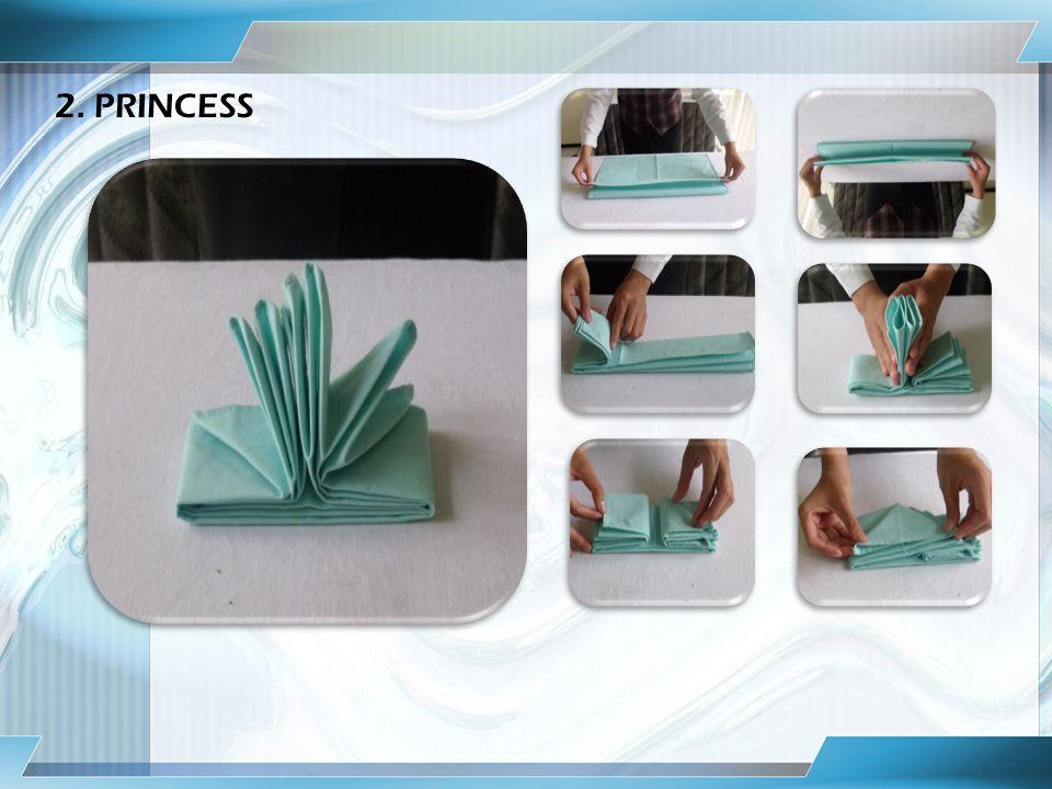2. PRINCESS
