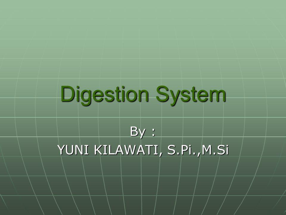 Digestion System By : YUNI KILAWATI, S.Pi.,M.Si