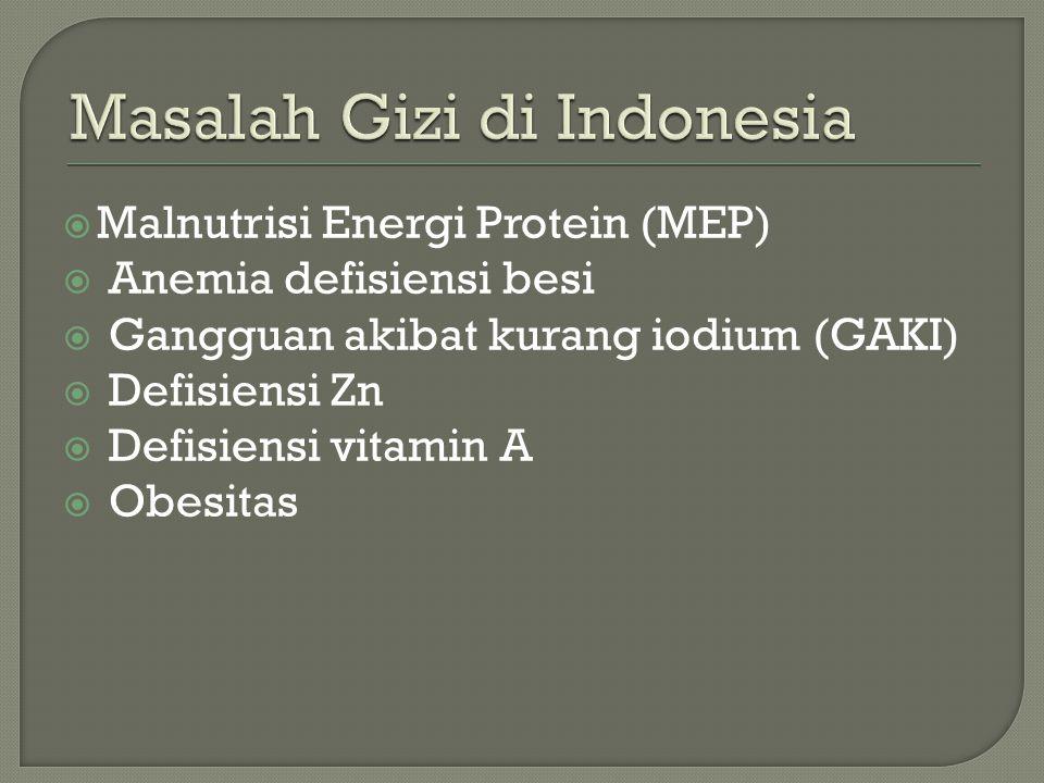  Malnutrisi Energi Protein (MEP)  Anemia defisiensi besi  Gangguan akibat kurang iodium (GAKI)  Defisiensi Zn  Defisiensi vitamin A  Obesitas
