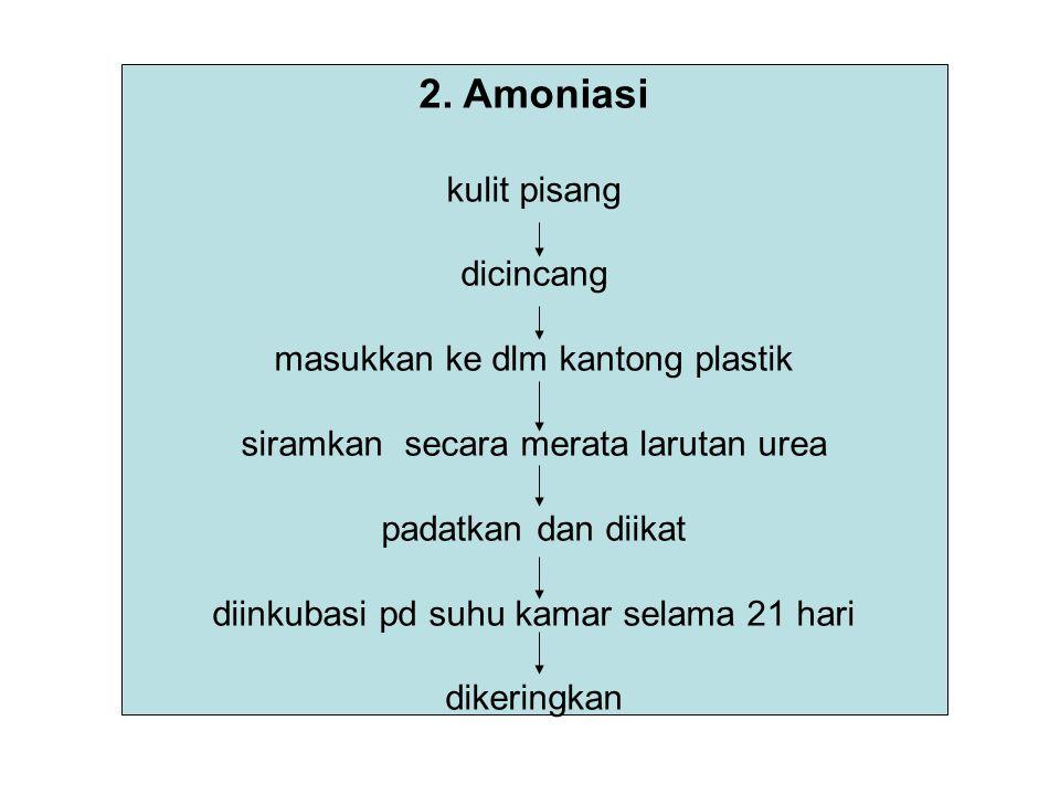 2. Amoniasi kulit pisang dicincang masukkan ke dlm kantong plastik siramkan secara merata larutan urea padatkan dan diikat diinkubasi pd suhu kamar se