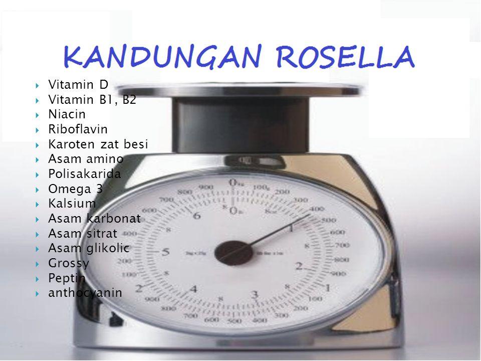 Biji Rosella Bunga Rosella Akar Rosella