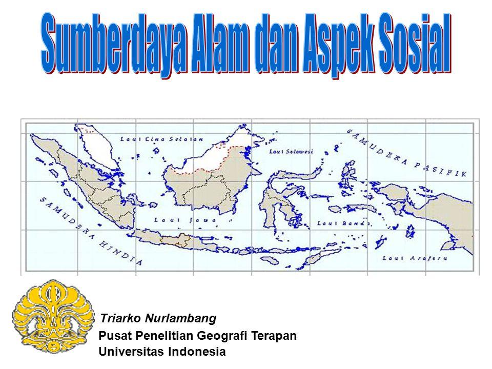 Pusat Penelitian Geografi Terapan Universitas Indonesia Triarko Nurlambang