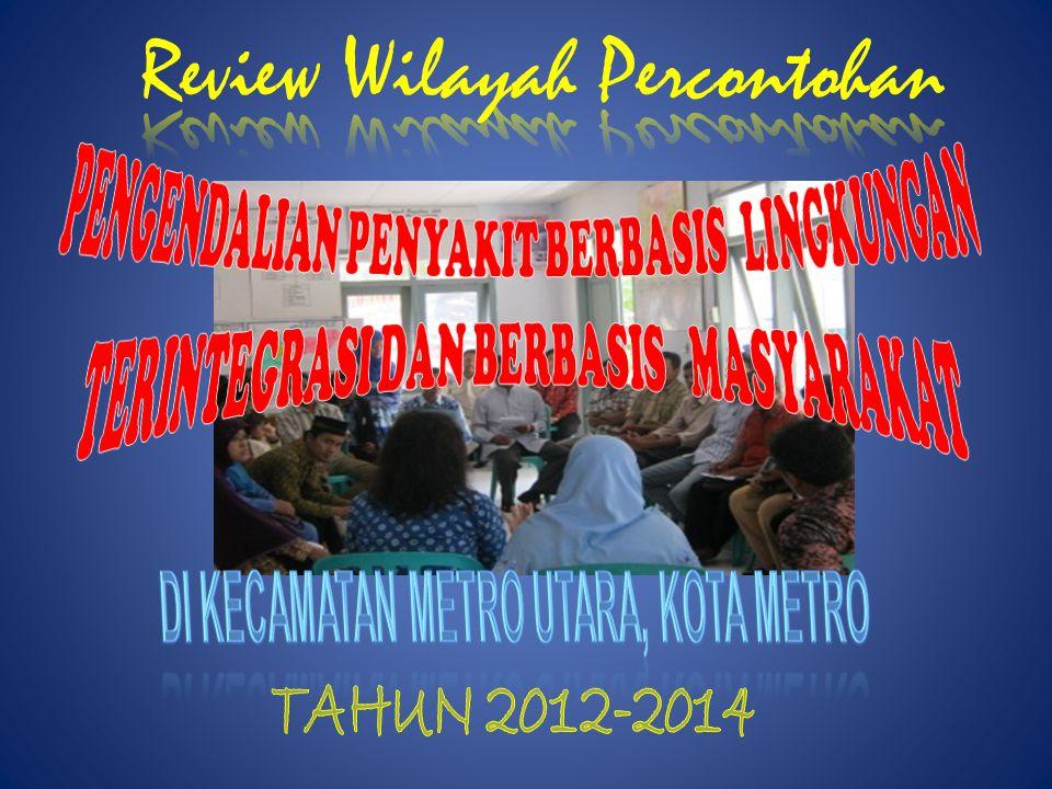 JUMLAH KASUS DBD MENURUT JENIS KELAMIN KECAMATAN METRO UTARA TAHUN 2012 PUSKESMAS DEMAM BERDARAH DENGUE (DBD) JUMLAH KASUS MENINGGALCFR (%) LPL+PLP LP Banjar Sari65110000.0 Karang Rejo0000000.0 Purwosari3690110.0 Jumlah1110.0