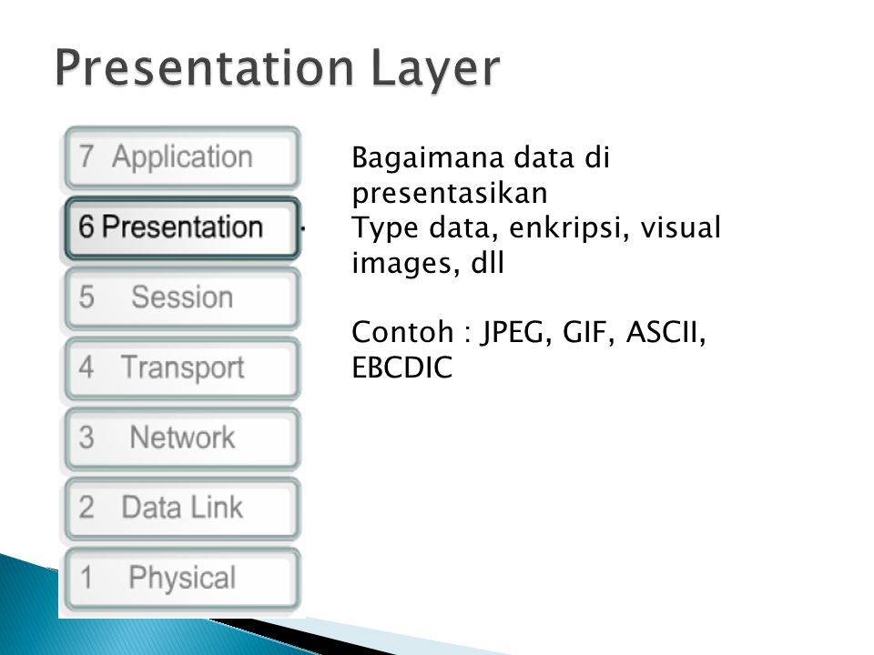 Bagaimana data di presentasikan Type data, enkripsi, visual images, dll Contoh : JPEG, GIF, ASCII, EBCDIC