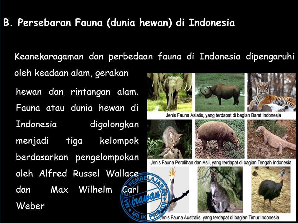 B. Persebaran Fauna (dunia hewan) di Indonesia Keanekaragaman dan perbedaan fauna di Indonesia dipengaruhi oleh keadaan alam, gerakan B. Persebaran Fa