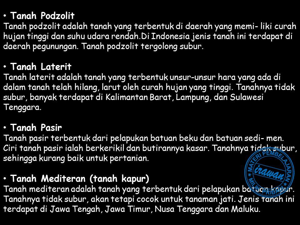Tanah Podzolit Tanah podzolit adalah tanah yang terbentuk di daerah yang memi- liki curah hujan tinggi dan suhu udara rendah.Di Indonesia jenis tanah