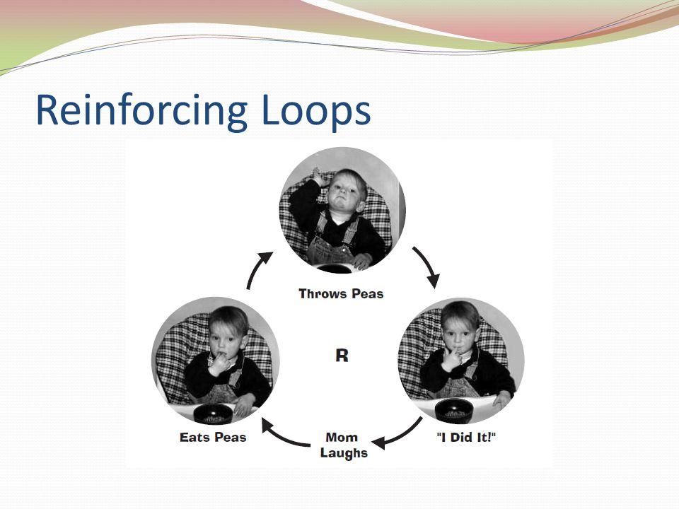 Reinforcing Loops