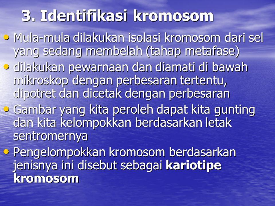 3. Identifikasi kromosom Mula-mula dilakukan isolasi kromosom dari sel yang sedang membelah (tahap metafase) Mula-mula dilakukan isolasi kromosom dari