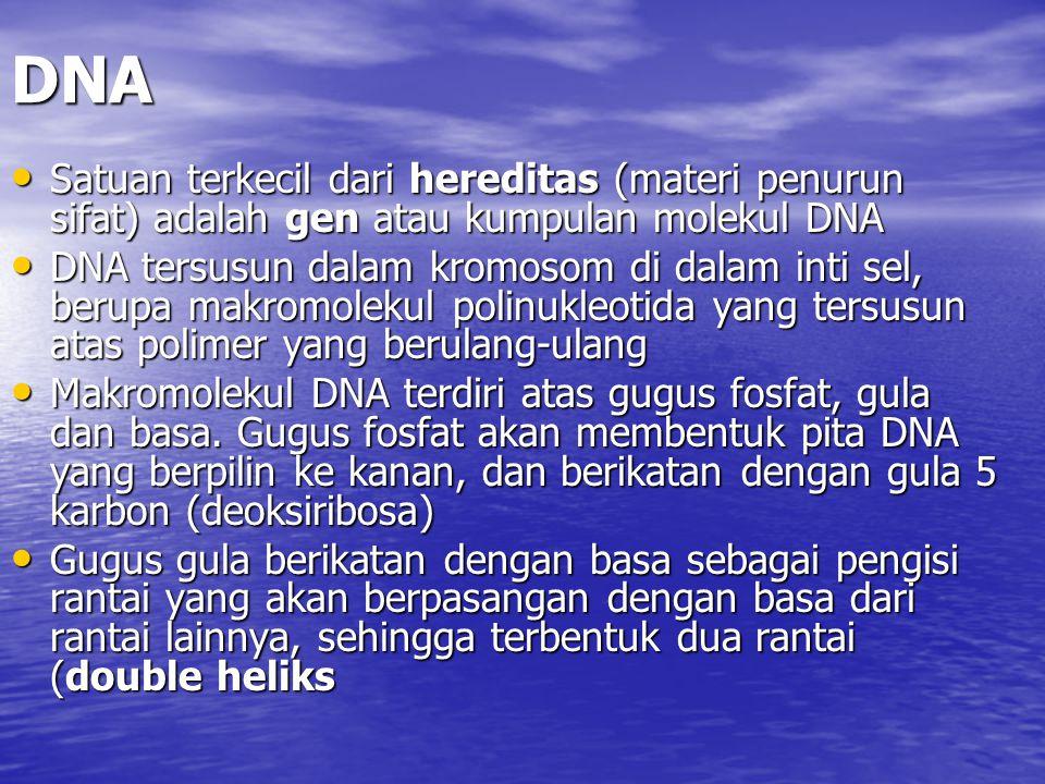 DNA Satuan terkecil dari hereditas (materi penurun sifat) adalah gen atau kumpulan molekul DNA Satuan terkecil dari hereditas (materi penurun sifat) a