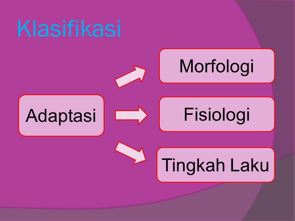 Klasifikasi Adaptasi Morfologi Fisiologi Tingkah Laku