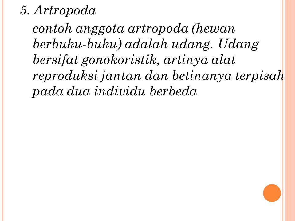 3. Coelenterata Coelenterata (hewan berongga) sifatnya hermafrodit. Contohnya Hydra. Berbeda dengan porifera, ovum Hydra dapat diubah oleh sperma yang