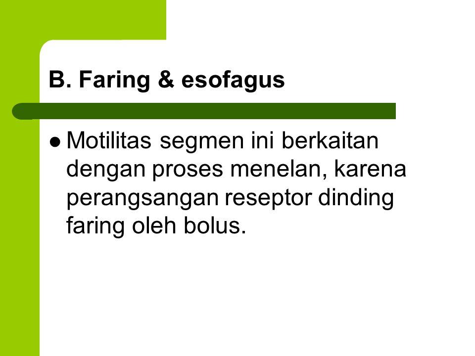 B. Faring & esofagus Motilitas segmen ini berkaitan dengan proses menelan, karena perangsangan reseptor dinding faring oleh bolus.