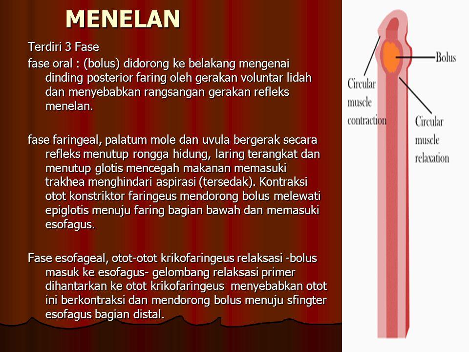 Gangguan Pada Esofagus DISFAGIA Kesadaran subyektif adanya ggn transport aktif zat yg dimakan/ diminum Disfagia non esofagus – ggn neurologis Disfagia esofageal ( obstruktif / motorik) - Strikture esofagus - Tumor intrinsik/ekstrinsik esofagus - Ggn sfingter esofagus