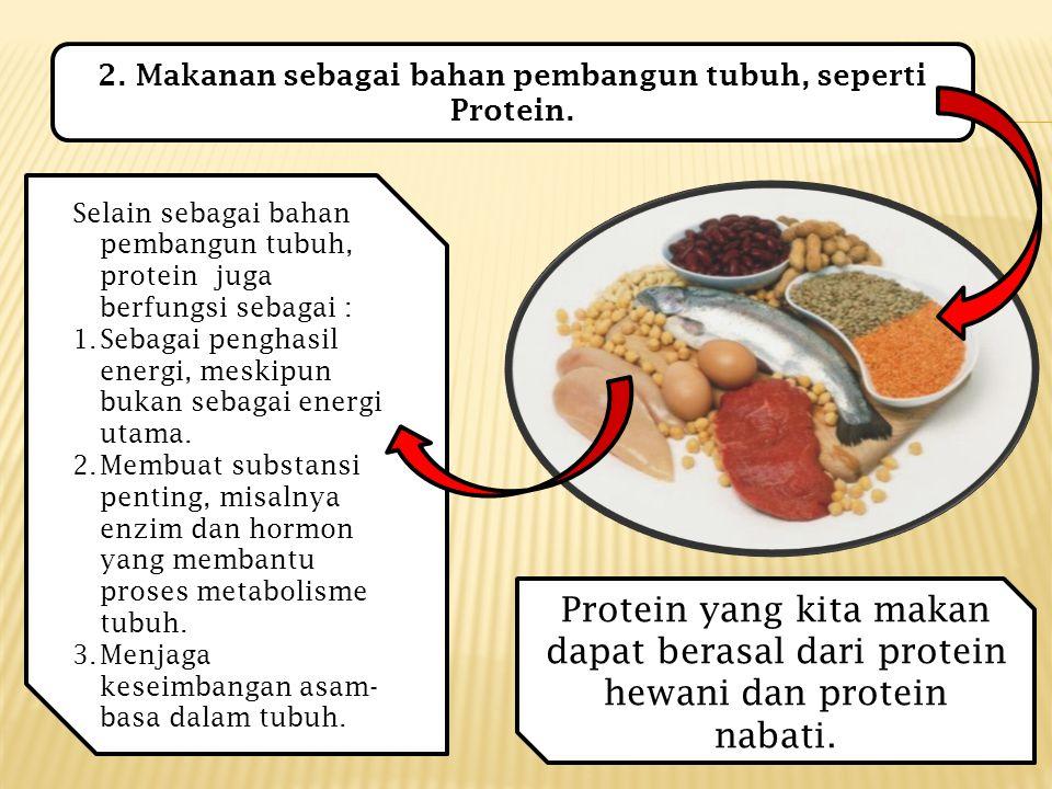 2.Makanan sebagai bahan pembangun tubuh, seperti Protein.