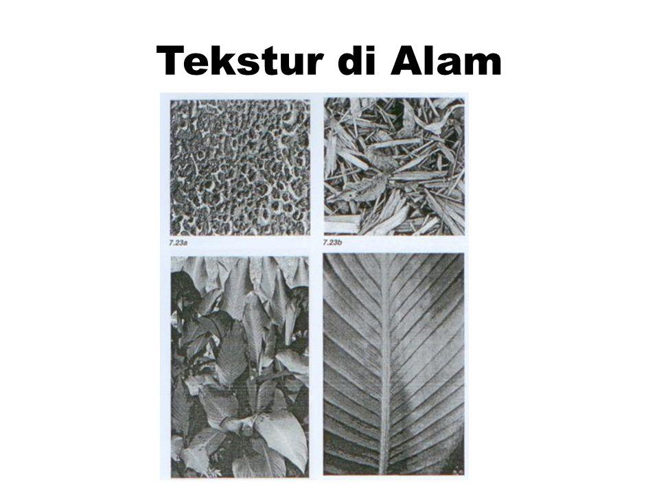 Contoh Tekstur Lain TEKSTUR CEREAL MERK CHEX TEKSTUR KAIN CORDUROY