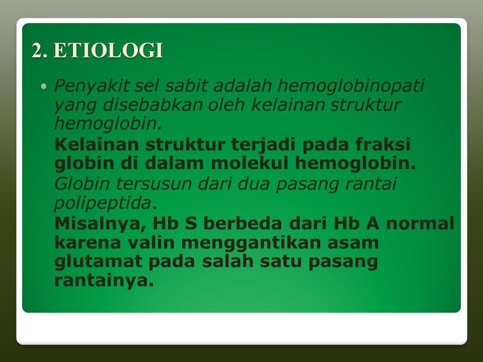 2. ETIOLOGI Penyakit sel sabit adalah hemoglobinopati yang disebabkan oleh kelainan struktur hemoglobin. Kelainan struktur terjadi pada fraksi globin