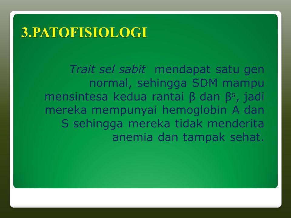 3.PATOFISIOLOGI Trait sel sabit mendapat satu gen normal, sehingga SDM mampu mensintesa kedua rantai β dan β s, jadi mereka mempunyai hemoglobin A dan S sehingga mereka tidak menderita anemia dan tampak sehat.