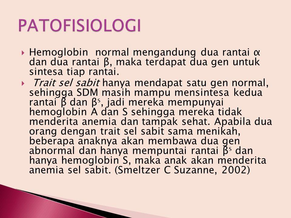  Hemoglobin normal mengandung dua rantai α dan dua rantai β, maka terdapat dua gen untuk sintesa tiap rantai.  Trait sel sabit hanya mendapat satu g