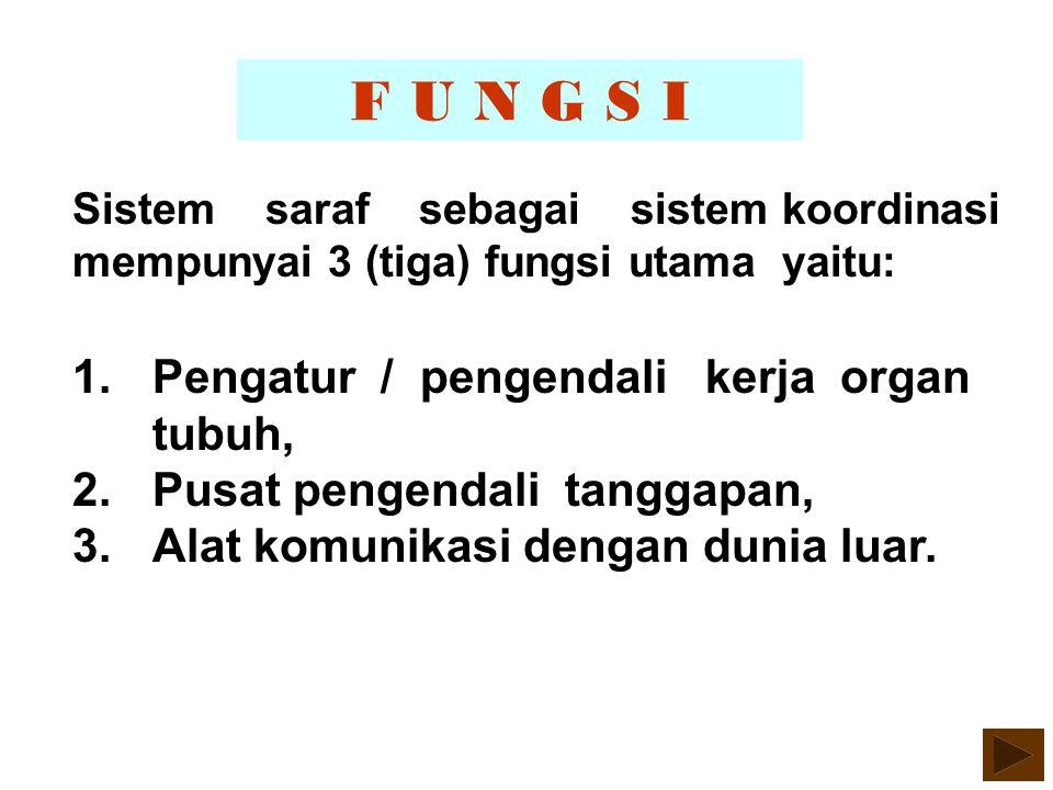 1.Pengatur / pengendali kerja organ tubuh, 2.Pusat pengendali tanggapan, 3.Alat komunikasi dengan dunia luar. F U N G S I Sistem saraf sebagai sistem