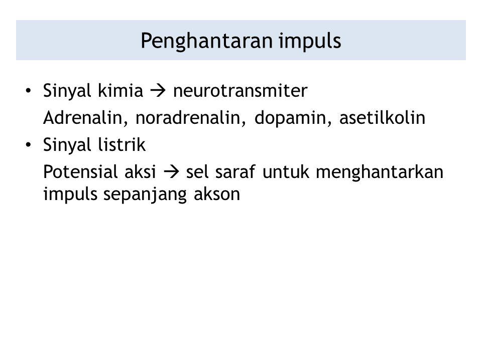 Penghantaran impuls Sinyal kimia  neurotransmiter Adrenalin, noradrenalin, dopamin, asetilkolin Sinyal listrik Potensial aksi  sel saraf untuk mengh