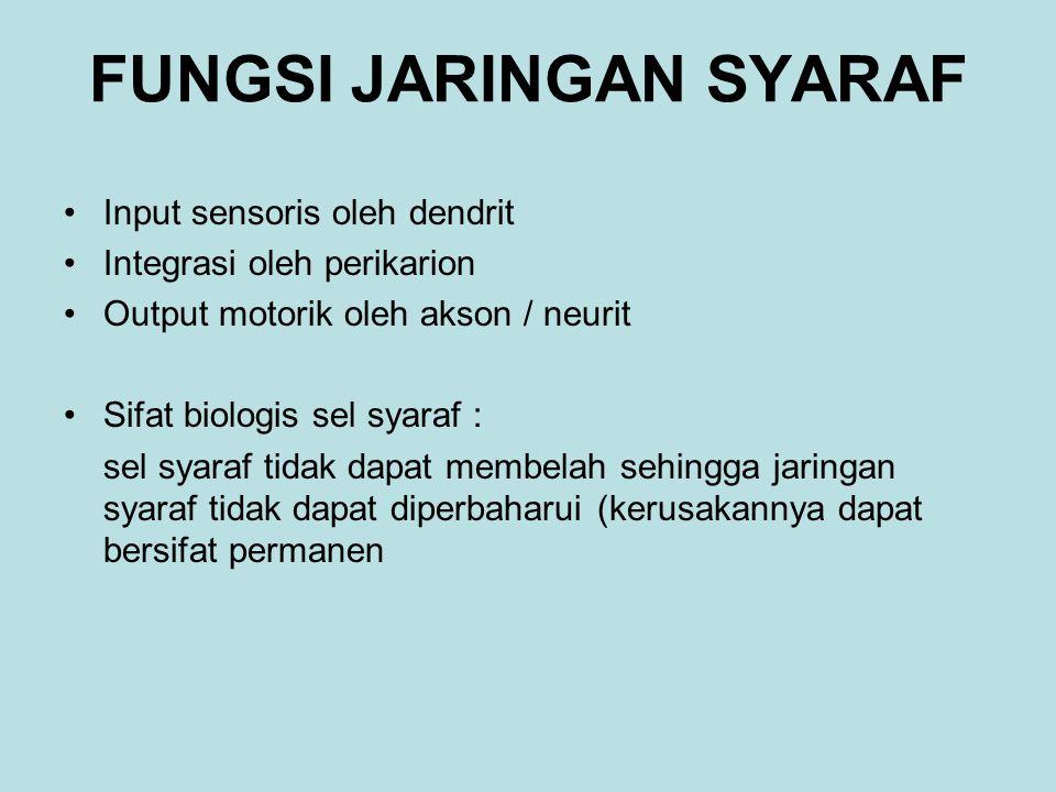 FUNGSI JARINGAN SYARAF Input sensoris oleh dendrit Integrasi oleh perikarion Output motorik oleh akson / neurit Sifat biologis sel syaraf : sel syaraf