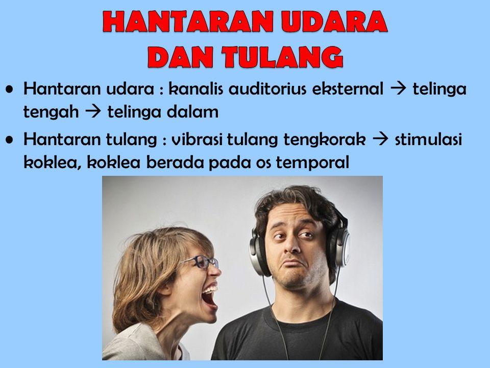 Tuli Pusat : kerusakan pusat auditori di otak, jarang Tuli Hantar : hambatan atau gangguan aliran suara ke telinga dalam Tuli Sensorineural : tuli terbanyak : masalah pada sistem saraf di telinga dalam