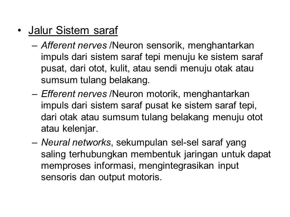 Bagan Sistem Saraf NERVOUS SYSTEM Central Nervous System Peripheral Nervous System BrainSpinal CordSomatic Nervous System (Voluntary) Automatic Nervous System (involuntary) Sympathetic NS (Arousing) Parasympathetic NS (Calming)