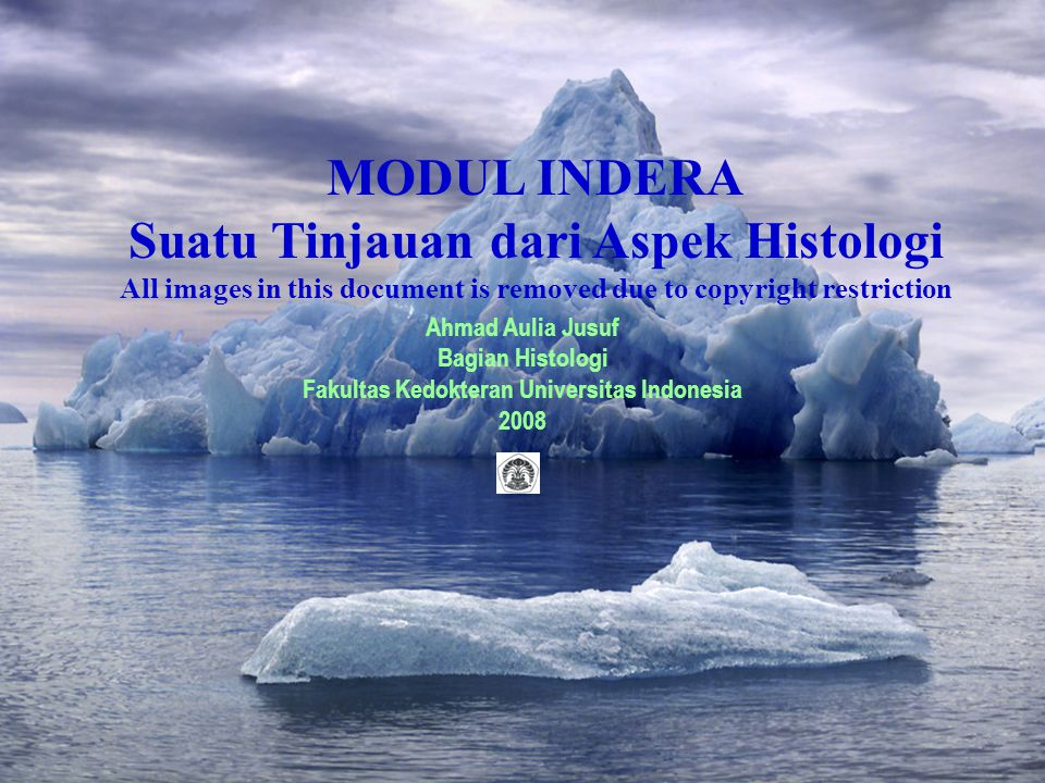 MODUL INDERA Suatu Tinjauan dari Aspek Histologi All images in this document is removed due to copyright restriction Ahmad Aulia Jusuf Bagian Histolog