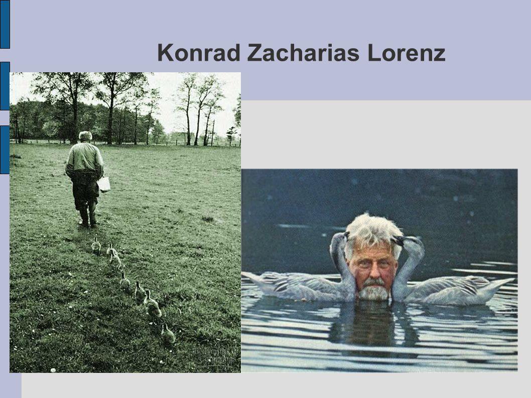 Konrad Zacharias Lorenz
