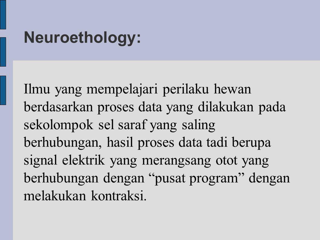 Neuroethology: Ilmu yang mempelajari perilaku hewan berdasarkan proses data yang dilakukan pada sekolompok sel saraf yang saling berhubungan, hasil pr