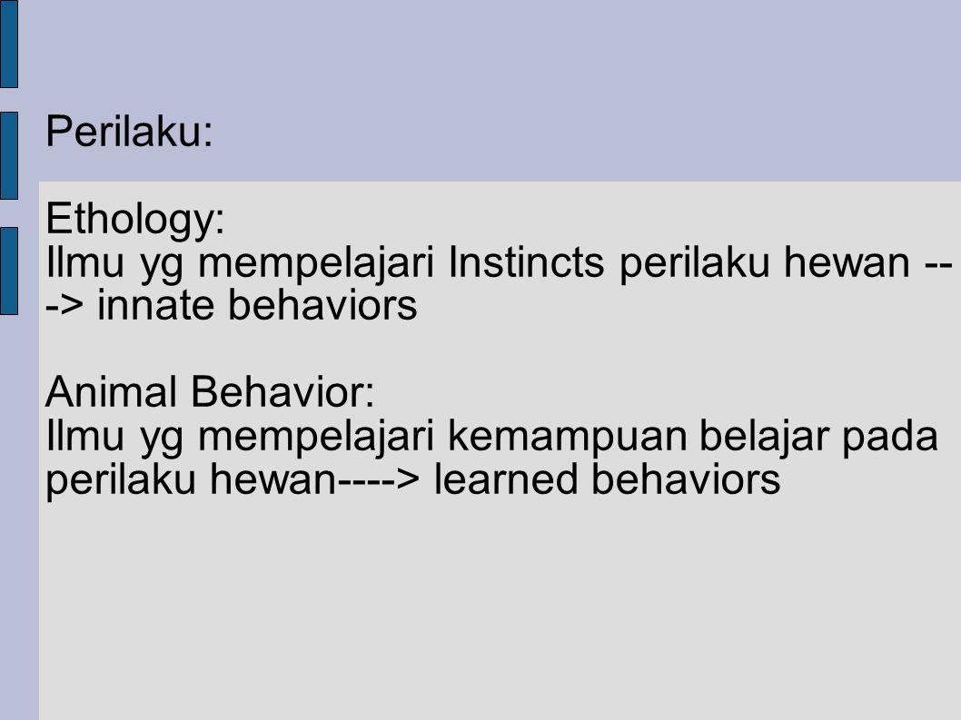 Penelitian Neuroetologi untuk menjawab: 1.