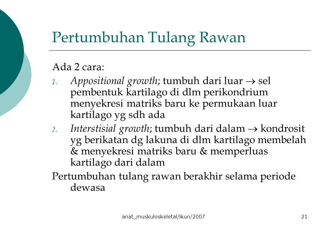 anat_muskuloskeletal/ikun/200721 Pertumbuhan Tulang Rawan Ada 2 cara: 1.