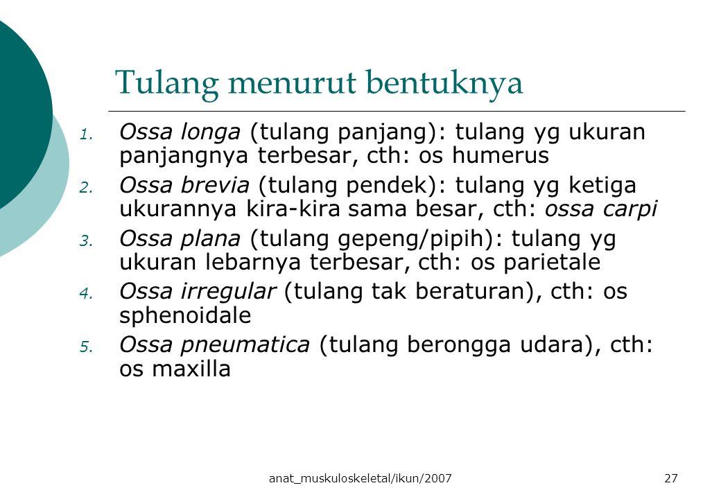 anat_muskuloskeletal/ikun/200727 Tulang menurut bentuknya 1. Ossa longa (tulang panjang): tulang yg ukuran panjangnya terbesar, cth: os humerus 2. Oss