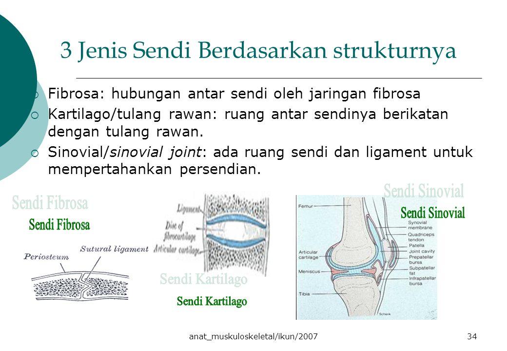 anat_muskuloskeletal/ikun/200734 3 Jenis Sendi Berdasarkan strukturnya  Fibrosa: hubungan antar sendi oleh jaringan fibrosa  Kartilago/tulang rawan: