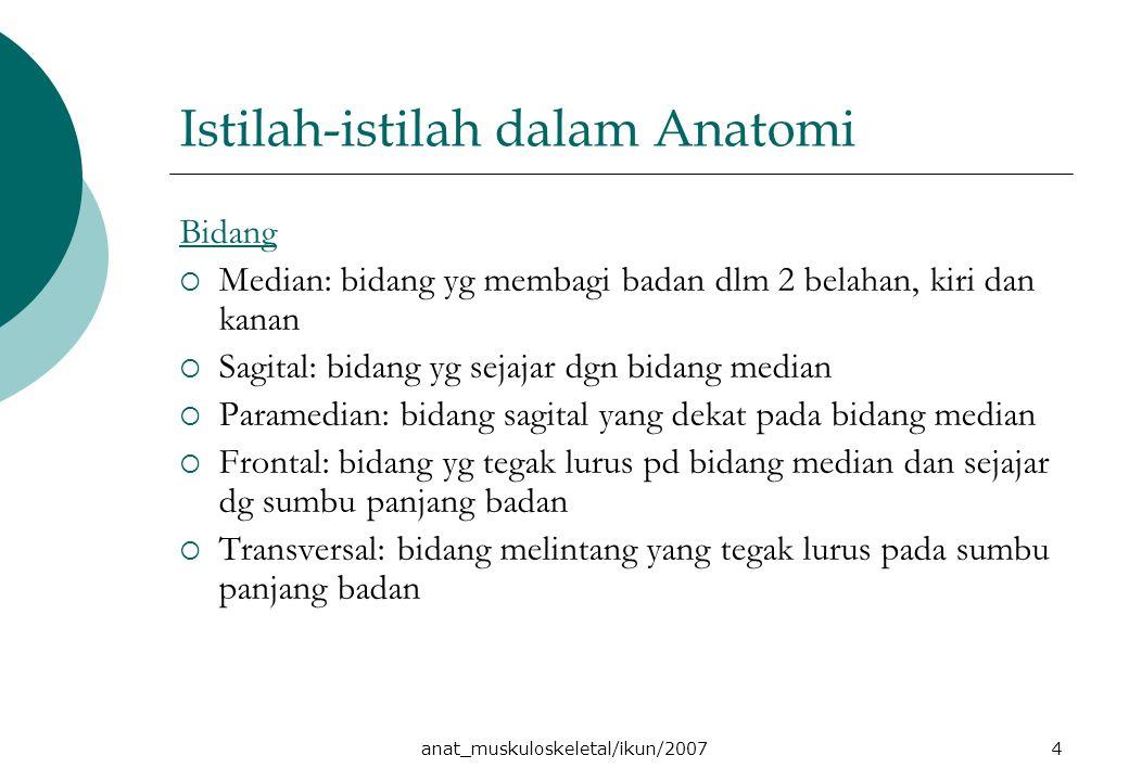 anat_muskuloskeletal/ikun/20074 Istilah-istilah dalam Anatomi Bidang  Median: bidang yg membagi badan dlm 2 belahan, kiri dan kanan  Sagital: bidang