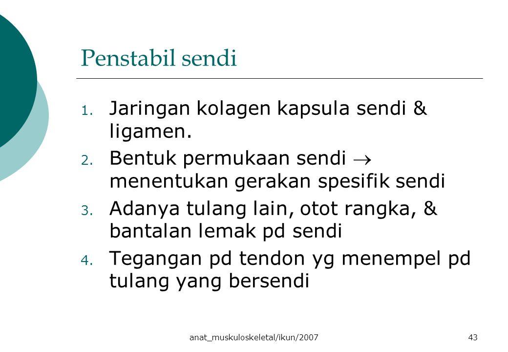 anat_muskuloskeletal/ikun/200743 Penstabil sendi 1.