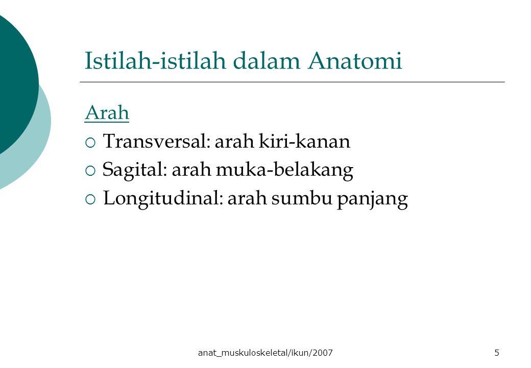 anat_muskuloskeletal/ikun/20075 Istilah-istilah dalam Anatomi Arah  Transversal: arah kiri-kanan  Sagital: arah muka-belakang  Longitudinal: arah sumbu panjang