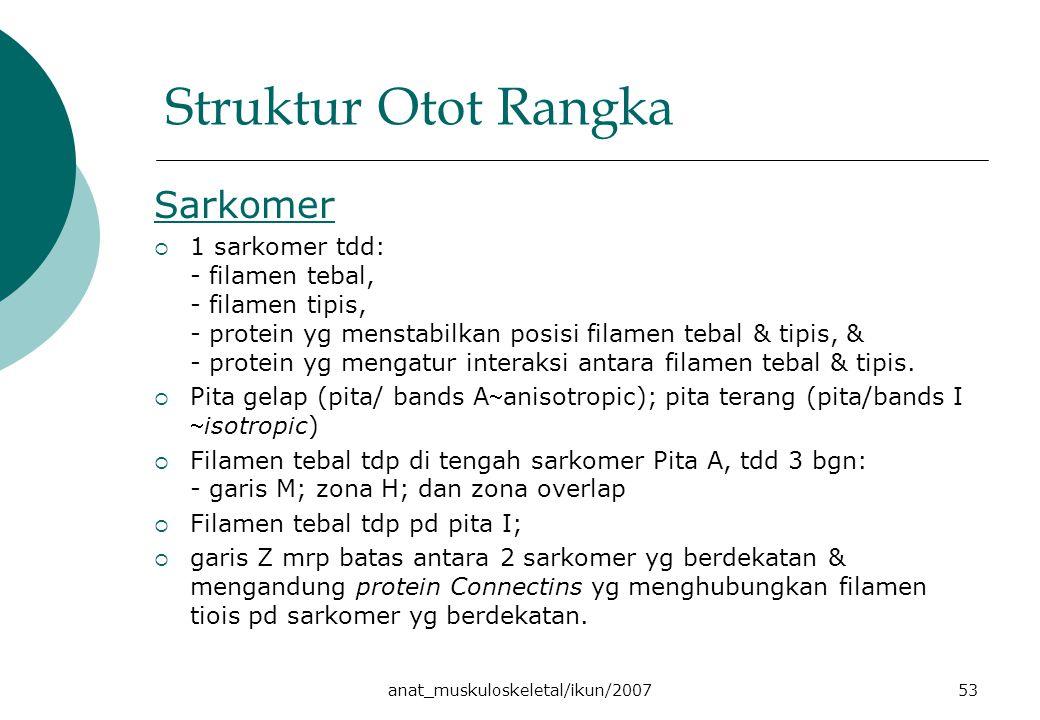 anat_muskuloskeletal/ikun/200753 Struktur Otot Rangka Sarkomer  1 sarkomer tdd: - filamen tebal, - filamen tipis, - protein yg menstabilkan posisi filamen tebal & tipis, & - protein yg mengatur interaksi antara filamen tebal & tipis.