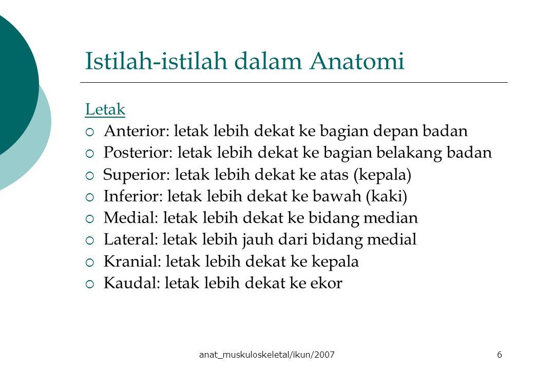 anat_muskuloskeletal/ikun/20076 Istilah-istilah dalam Anatomi Letak  Anterior: letak lebih dekat ke bagian depan badan  Posterior: letak lebih dekat